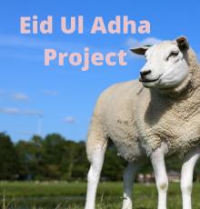 Eid Ul Adha Project (1)